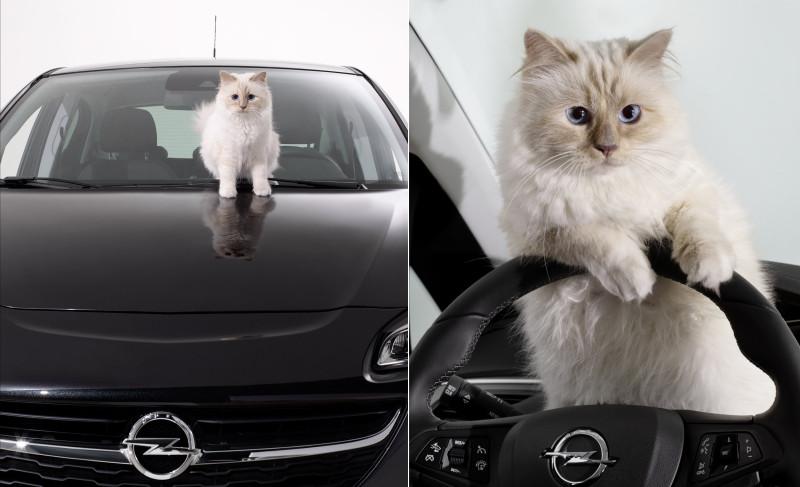 Opel-Corsa-calendar_Choupette_Karl_Lagerfeld-800x487