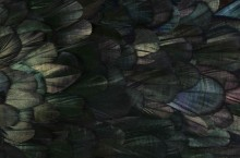 detail-naturesquared-1